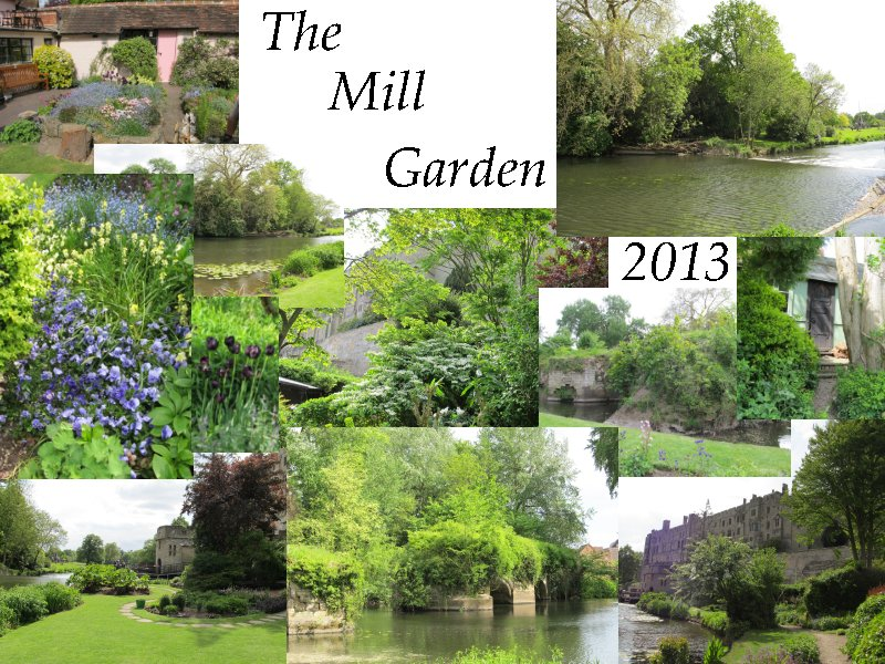 Collage Mill Garden Warwick