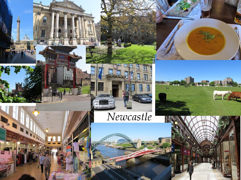 Collage Newcastle