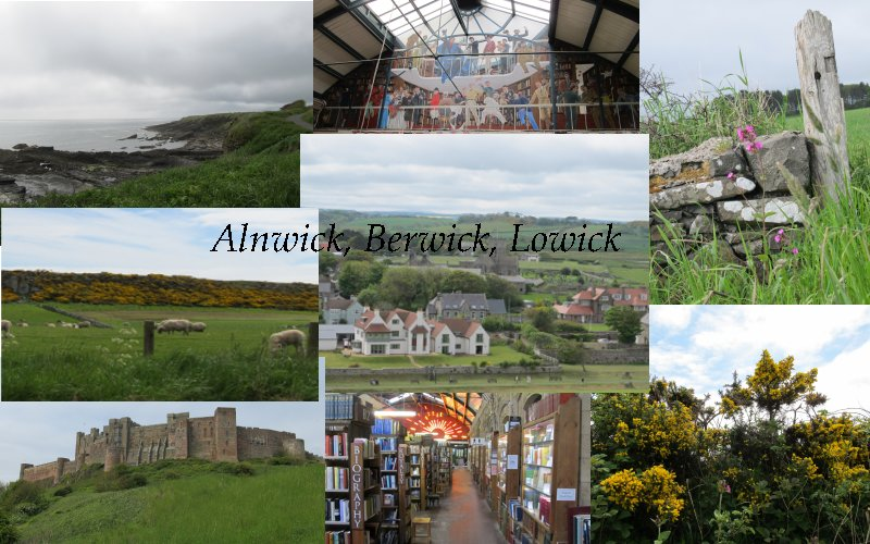 Collage Alnwick